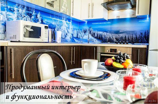 Квартира на сутки ст.м. Пушкинская