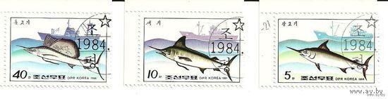 Фауна. Рыбы. КНДР 1984 г. (Корея)