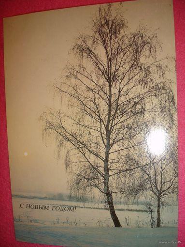 Открытка СССР Новый год С Новым годом!1984г фото Н.Дейкина