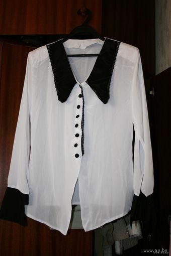 Белая блузка с чёрным воротником и манжетами