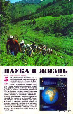 """Журнал """"Наука и жизнь"""", 1981, #5"""
