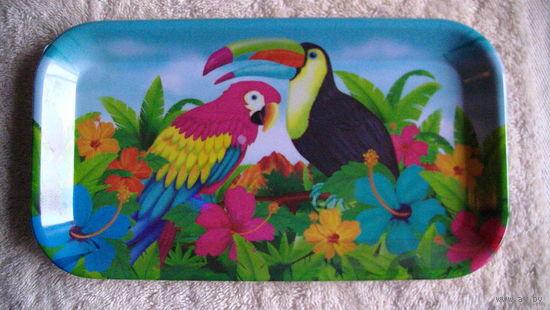 Тарелки пластиковые 5 шт. с попугаем и красивой птичкой. распродажа