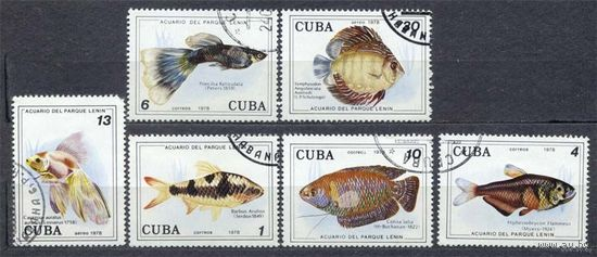 Фауна. Аквариумные рыбки. Куба. 1978. Полная серия 6 марок