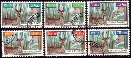 6 марок 1961 год Гвинея Антилопы 71-76