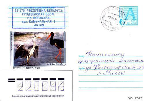 "2003. Конверт, прошедший почту ""Птушкi Беларусi. Чорны бусел"""