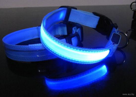 Светящийся ошейник LED светодиодный ошейник - безопасность вашего питомца,в наличии все размеры кошки/собаки мерцающие огоньки размеры XS / S / M / L / XL (20)