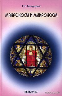 Макрокосм и микрокосм. Том 1: Монотеизм религии триединого Бога