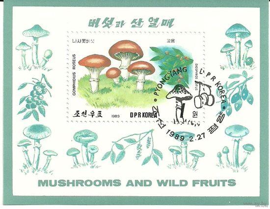 Флора. Грибы и фрукты. КНДР 1989 г. (Корея) Серия + блок