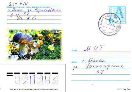 """2004. Конверт, прошедший почту """"Грибы, белые"""""""