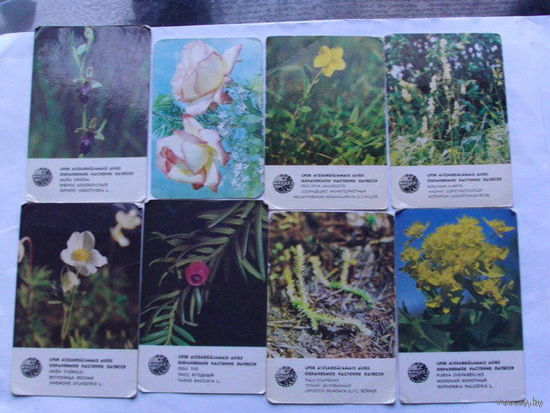 Карманные календарики. цветы   распродажа 1