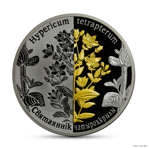 20 рублей. 2013 Зверобой четырехкрылый. Серебро Ag925