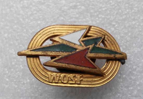 Польский армейский спортивный значок WOSF, 1-я степень, винт #0196