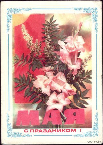 С праздником 1 мая! 1975 год И.Дергилёв