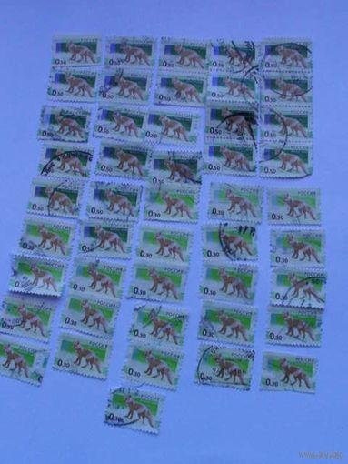 Россия марки 2008г лисы  0.30 коп, 0.50 коп, 37шт. распродажа