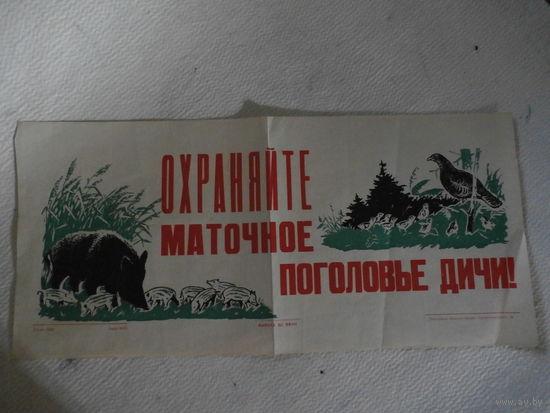 """ПЛАКАТ СССР в подарок охотникам """"Охраняйте маточное поголовье дичи!""""1968"""