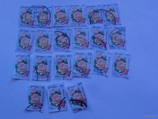 Беларусь марки 2008г Роза распродажа