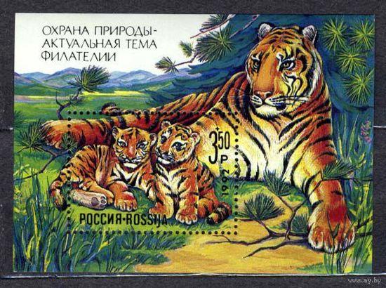 Тигры. Блок. Россия. 1992. Чистый