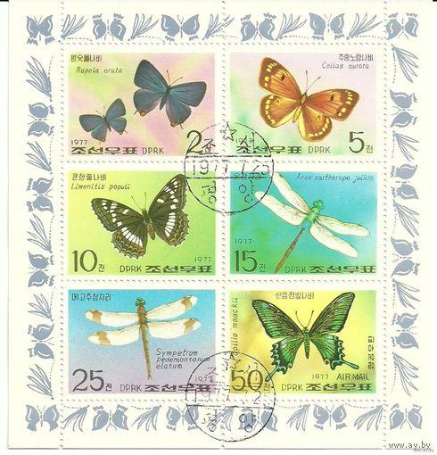 Фауна. Бабочки. КНДР 1977 г. (Корея) Малый лист