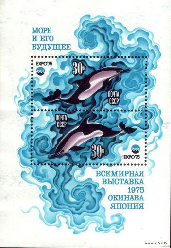 Комплект из блока и шести марок 1975 год Море и его будущее
